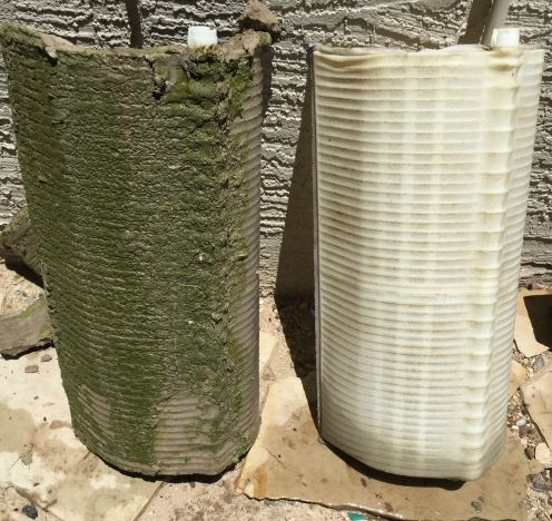 Filter cleanings, DE grid wash, 12 Pool Service , Arizona, filter cleanings